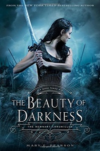 «The Beauty of Darkness»