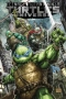 Teenage Mutant Ninja Turtles Universe, Vol. 01: The War To Come